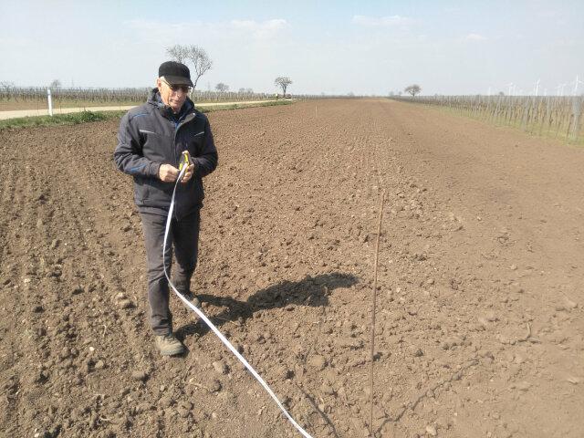 Mann auf einem geeggten Feld rollt ein Maßband auf